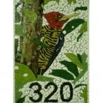 Número de Casa em Mosaico Pica-Pau